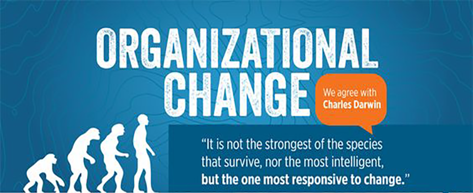 how to change organizational culture pdf